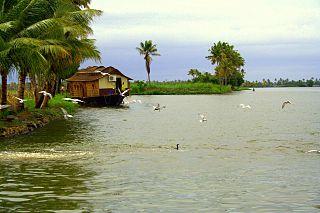 Photo d'un paysage de fleuve du Kerala
