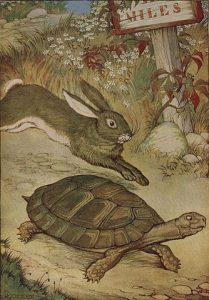 Le lièvre et la tortue par Milo Winter