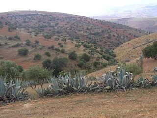 paysage de moyenne montagne d'Algérie