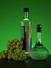photo de bouteilles de Pisco sur fond vert