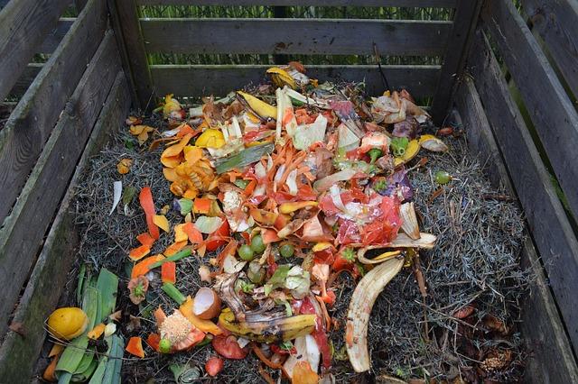 photographie d'un tas de compost