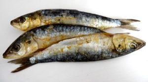 photographie de trois sardines cuites