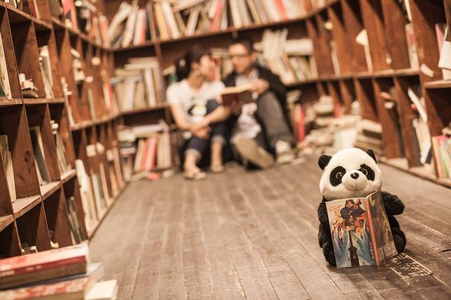 Peluche panda lisant un livre