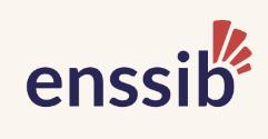 logo de l'école nationale supérieure des sciences de l'information et des bibliothèques