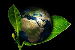 Planète Terre posée sur une feuille par Gerd Altmann de Pixabay