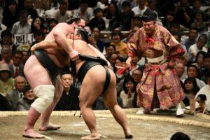 Scène de lutte entre deux sumos