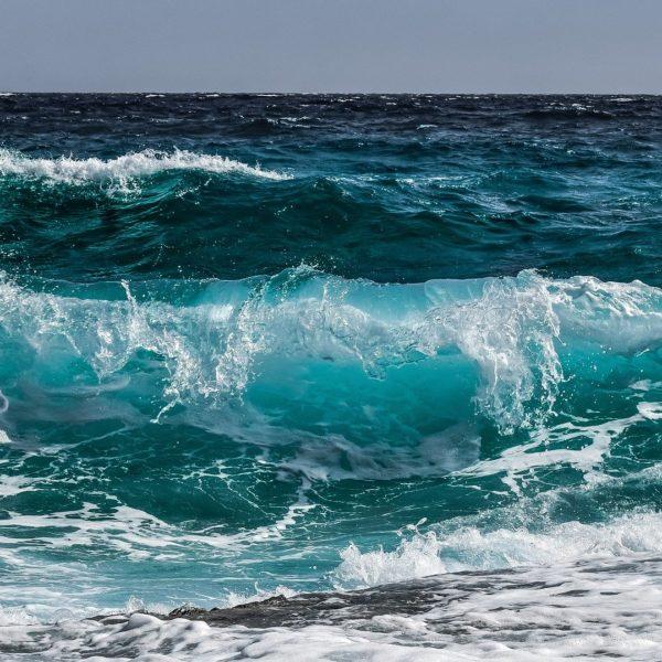 Sciences : Qu'est-ce qui provoque les vagues?