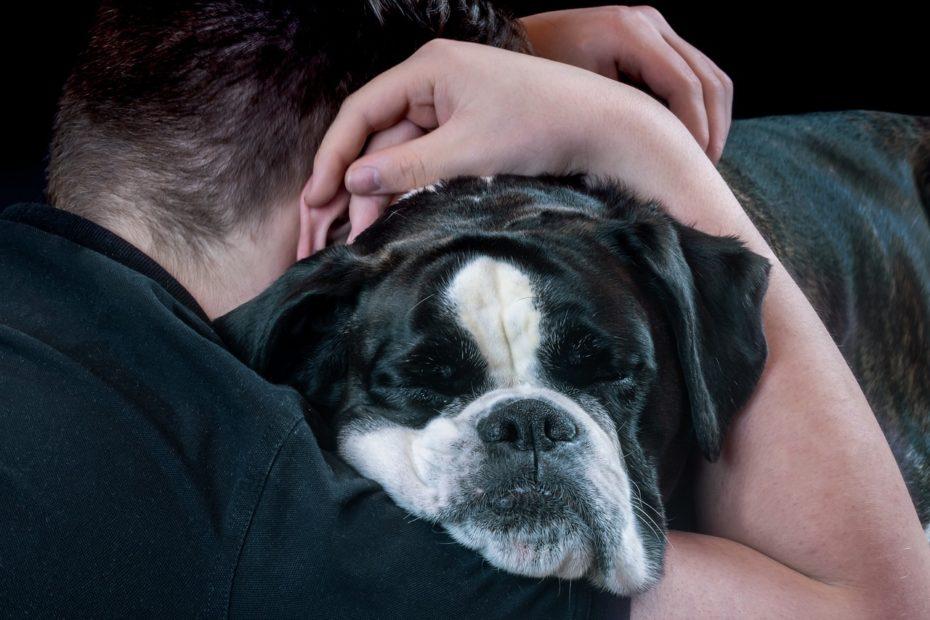 câlin entre un homme et son chien