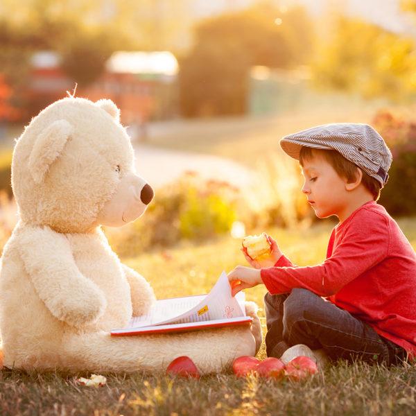 Je cherche des albums et des romans jeunesse sur l'automne pour lire aux enfants de l'école